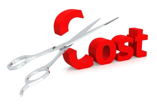 Cost Reduction Options